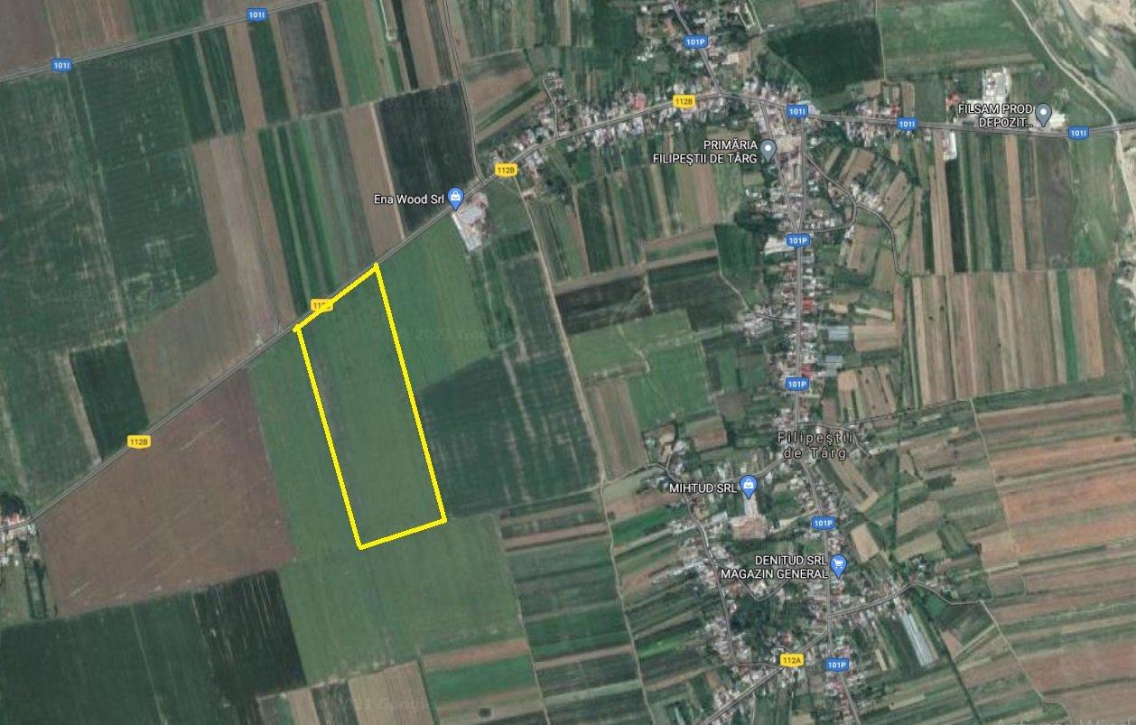 poza FILIPESTII DE TARG - PRAHOVA - TEREN 50,000 MP CU DESCHIDERE 163 ML IN DRUM NATIONAL