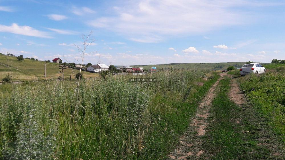 poza Teren extravilan arabil - 5.000 m²