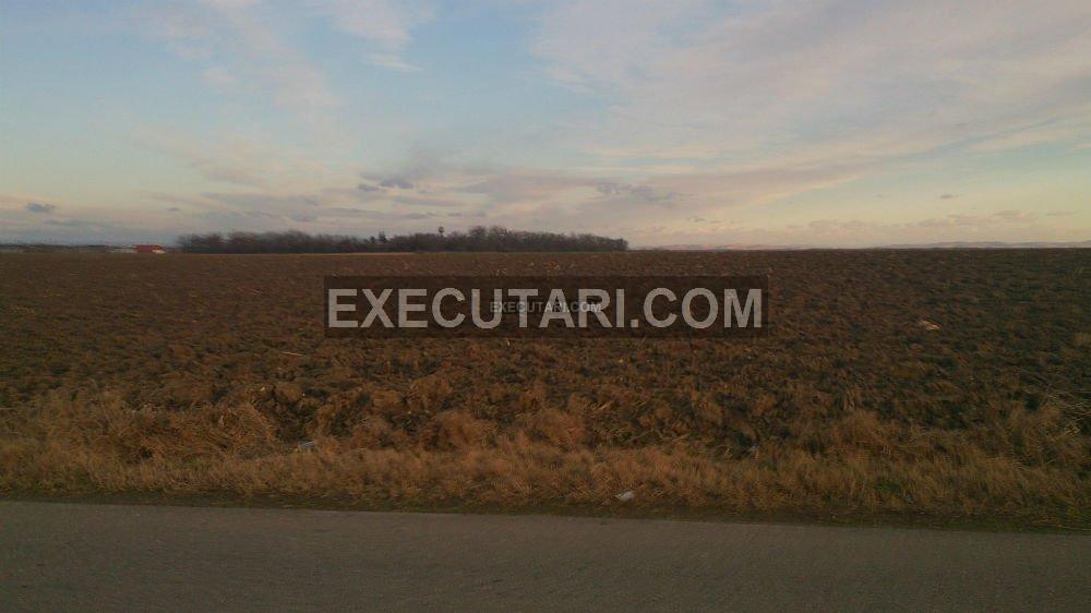 poza Teren extravilan,agricol - 4600 m²