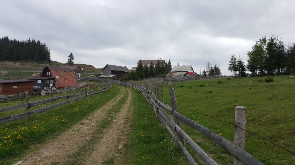 poza Sat. Piatra Fantanele - Teren intravilan - 9.546m², Tiha Bargaului