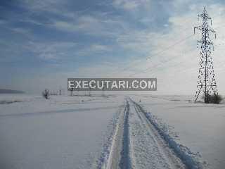 teren-extravilan-arabil---12500-mp-com-dascalu.jpg